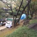 やむを得ず公園にてテントを張って生活している