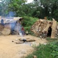 定住集落のバカ・ピグミーの家。