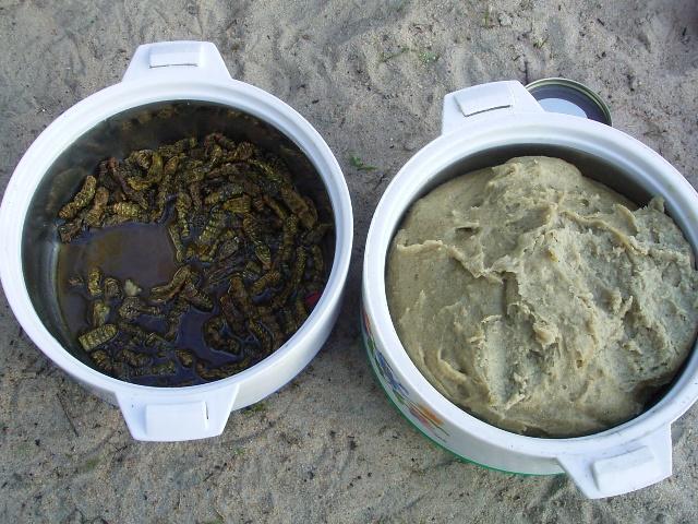 主食のオシスィマ(トウジンビエの練り粥)とイモムシスープ