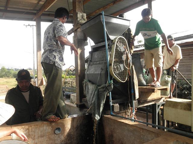 写真5:単協におけるコーヒー加工の様子(筆者撮影)