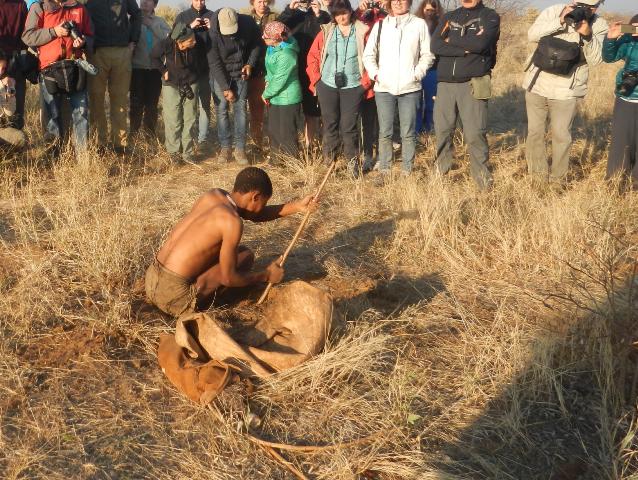 薬にもなる根っこを掘り出すブッシュマンを、多くの観光客が囲む