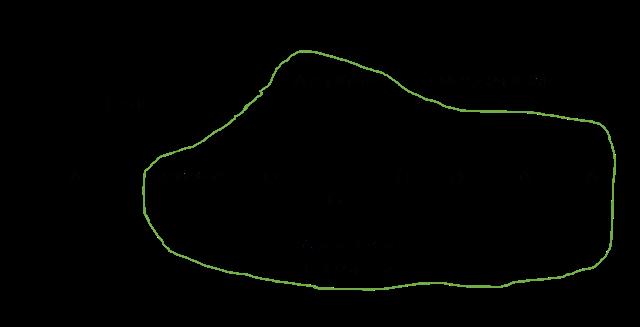 バヤルマーの系譜(曲線内は再構築された親族ネットワーク)