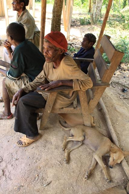トゥーマと狩猟犬。