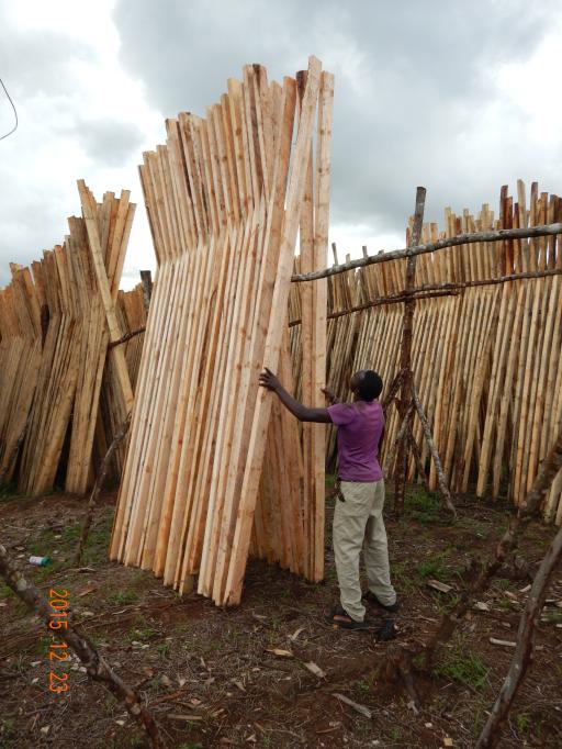 ベナの村では切り出した板材を道端に積んで乾燥させる
