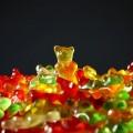 gold-bear-318359_640