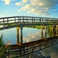 bridge-1642768_640
