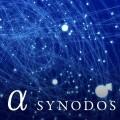 _a-synodos_big_233