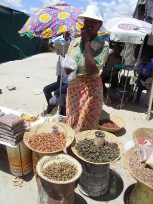 町で昆虫を販売する女性