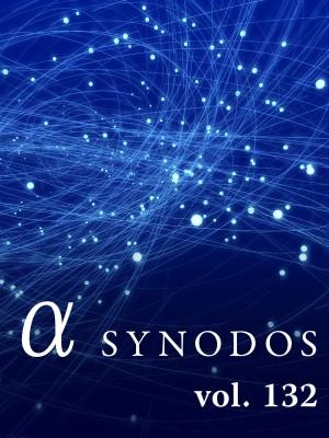_a-synodos_big_132