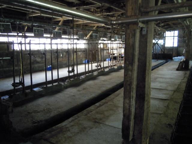 飯舘村の酪農家たちは手塩にかけて育ててきた牛を処分した。写真は、空になった牛舎(2011年8月11日、筆者撮影)。