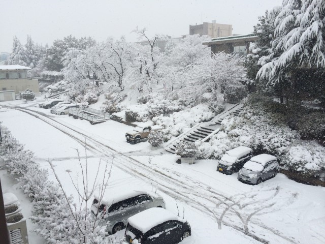 写真1 山梨大学工学部駐車場(撮影:2014年2月14日14時)