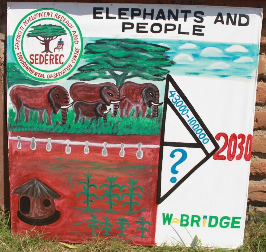 現地NGOが作成したポスター。「2030年にゾウが10万頭に増えたとき、畑と住民の生活は?」と問いかけている