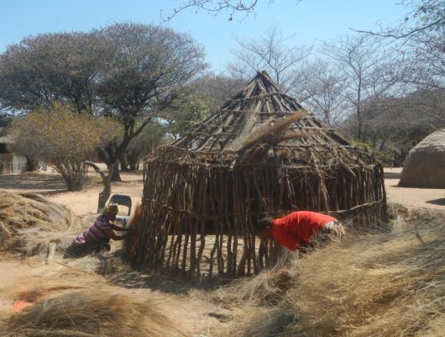 ブッシュマンの伝統的な家屋は、丸く組んだ木を乾いた草で覆ってつくられる。