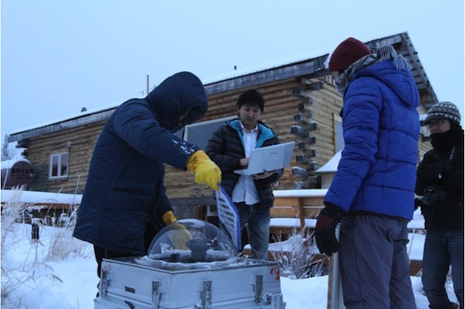 北極での調査