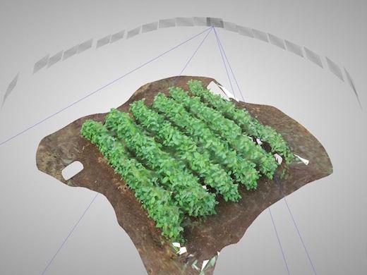 ドローンで撮影した圃場の画像から3次元再構築したモデル